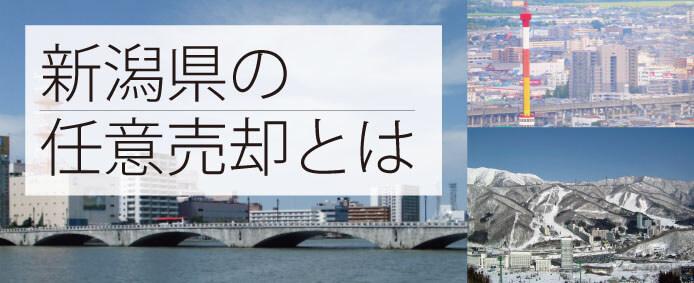 新潟県 任意売却~解決事例もご紹介~
