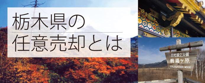 栃木県 任意売却~解決事例もご紹介~